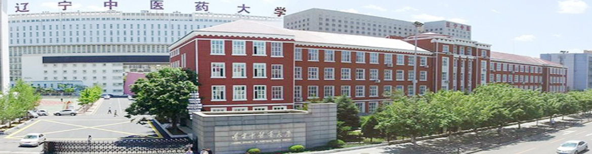 Liaoning-University-of-Traditional-Chinese-Medicine-Slider-4