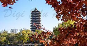 Peking University-campus4