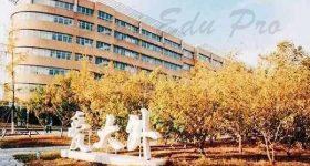 Dalian_University_of_Foreign _languages-campus2