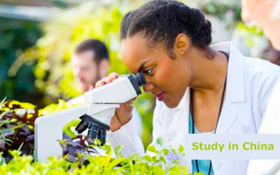 Food and agriculture study in china-x