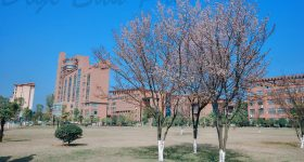 Jingdezhen-Ceramic-Institute-Campus-2