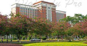 South_China_Normal_University-campus3