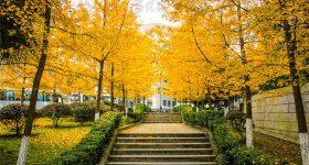 Chengdu_University_of_Technology-campus3