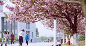 China Pharmaceutical University campus