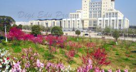 Jianghan-University-Campus-1Jianghan-University-Campus-1