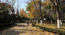 Nanjing University-campus4