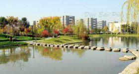 Northwestern-Polytechnical-University-Campus-2