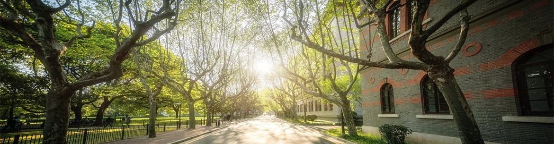 Shanghai Jiao Tong University Slider 2