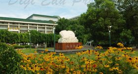 Wuhan University of Technology-campus1