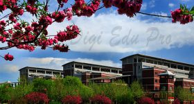 Hebei_University-campus4