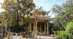 Jiaying_University-campus4