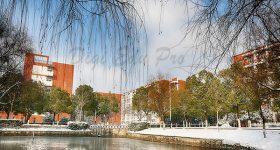 Anhui_Xinhua_University-campus4
