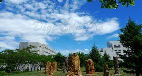 Dalian_University-campus3